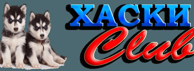 Logo-800x274.png