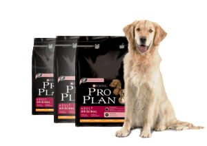 PURINA Pro Plan Adult product