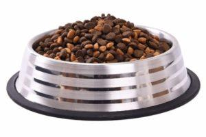 Stainless-Steel-Dog-Feeders